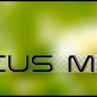 Focus Mask